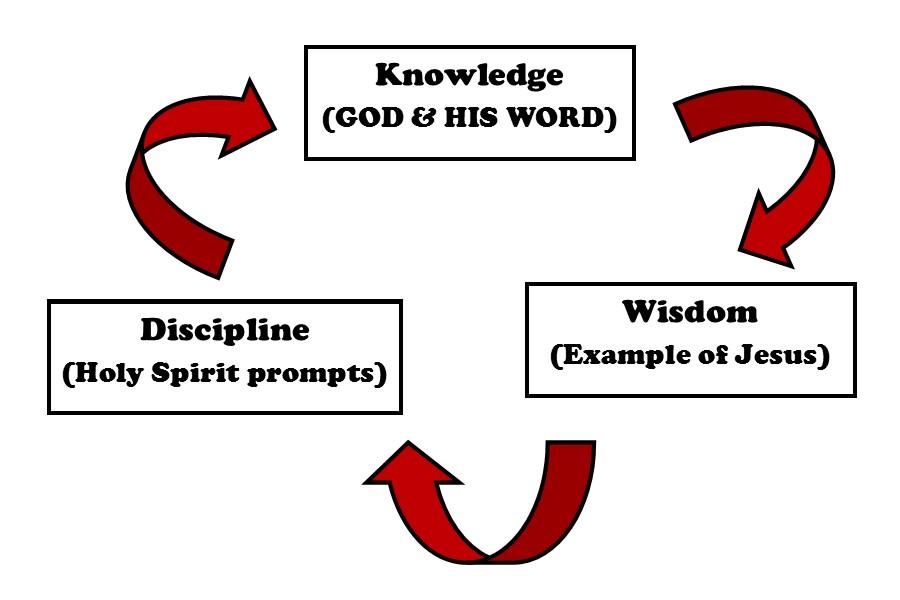 Knowledge Wisdom And Discipline Cross My Heart Ministrycross My